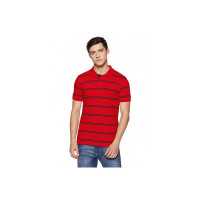 Hanes Men's Striped Regular Fit Polo