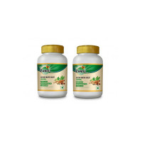 Zandu Ayush Kwath Tablets - A Blend of Powerful Ayurvedic Herbs to Protect Against Infections | Natural Immunity Booster | Cough & Cold Relief Formula | - 60 Tablets (Pack of 2)